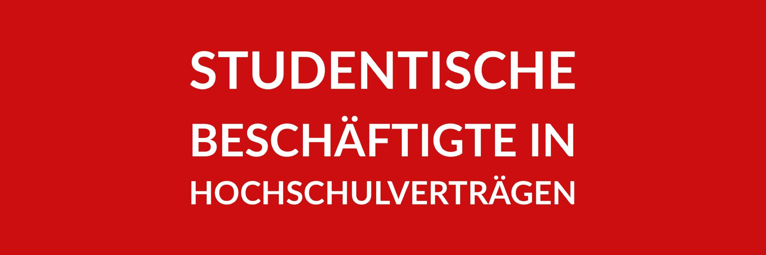 Anfrage 'Studentische Beschäftigte in Hochschulverträgen' (PDF)